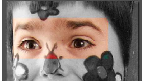 Reedición I Concurso de relatos «Cuéntame el Autismo». Nº 76. Hijo, Mírame a los ojos. Por Carmen Sacristán