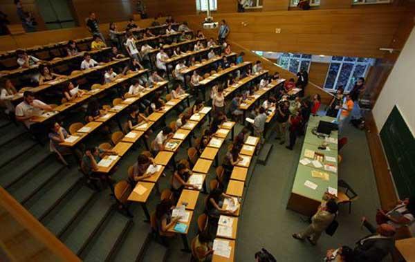 Guía de Atención a la Discapacidad en la Universidad 2014