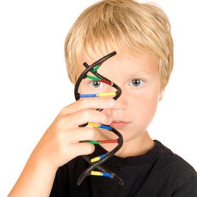 Encuentran tres rutas genéticas del Autismo