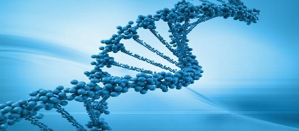 Identifican una variante genética relacionada con el autismo