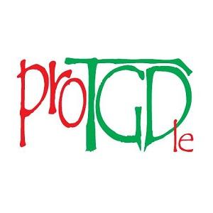 Asociación ProTGD presenta el III Curso de Intervención con personas con TEA