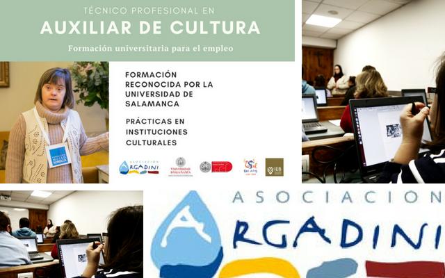 Becas y ampliación de matrículas para el Curso Técnico Profesional Auxiliar de Cultura