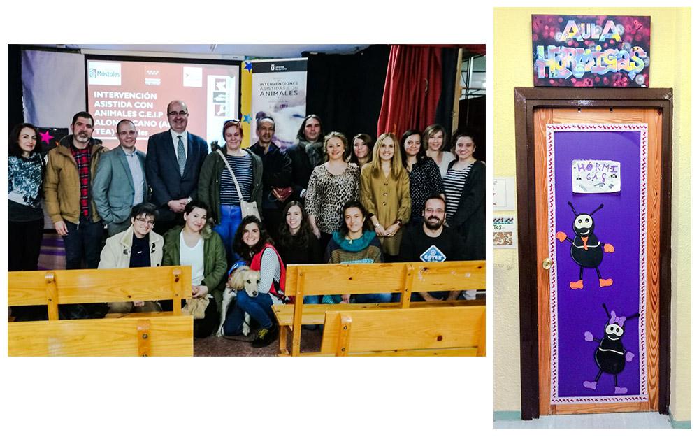 Presentación del proyecto de intervenciones asistidas con animales en el CEIP Alonso Cano