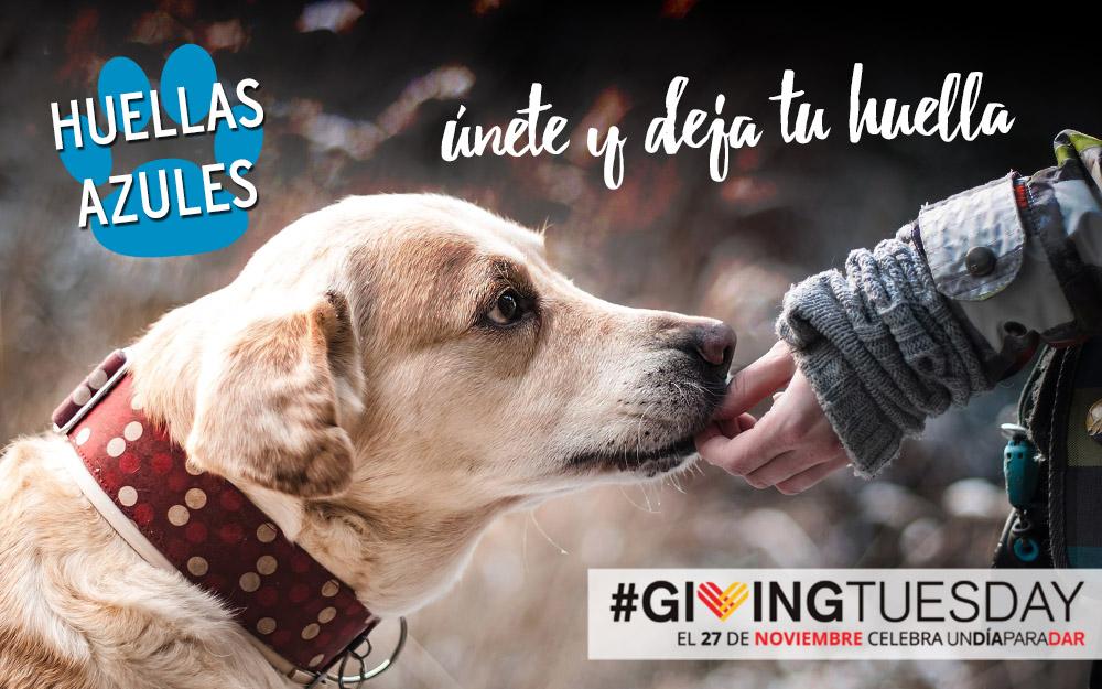 Autismo Madrid se suma al #GivingTuesday!