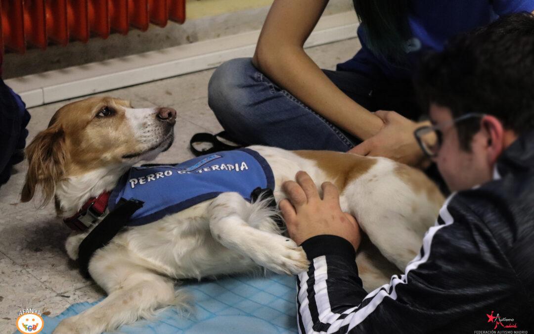 ¿Por qué los perros son tan especiales para las personas con TEA?