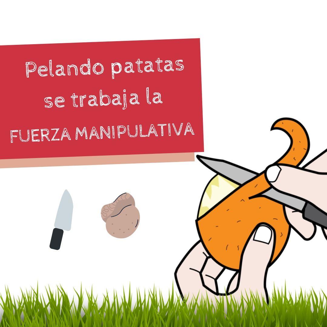 03_motricidad_tortilla