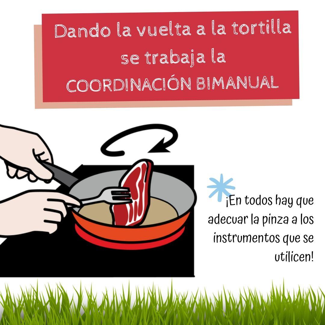04_motricidad_tortilla